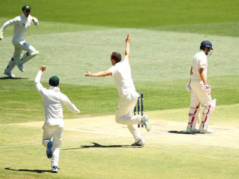 Devastated Joe Root dismissed by Josh Hazlewood as Australia close in on Ashes victory