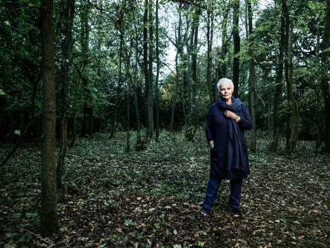 Everything you need to know about Judi Dench: My Passion For Trees