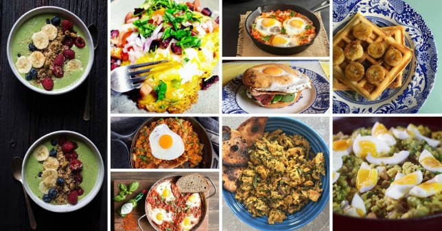 Green berry granola smoothie bowl, Breakfast taco, Kimchi fried rice, Chickpea shakshuka, Italian eggs in purgatory, Egg, bacon and cream cheese bagel, Masala scrambled eggs, Almond butter waffles with caramelised bananas, Kedgeree with boiled eggs