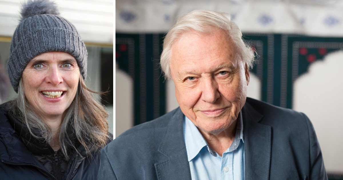 David Attenborough is an 'absolute genius' says Blue Planet 2 boss as she teases third series