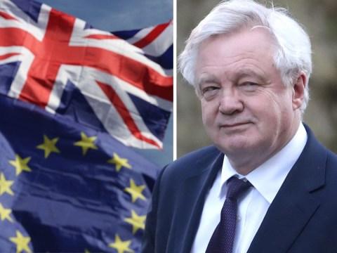 Brexit Secretary David Davis hints UK may never leave the EU