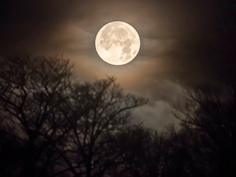 The 'Flower Moon' this week is the last supermoon of 2020