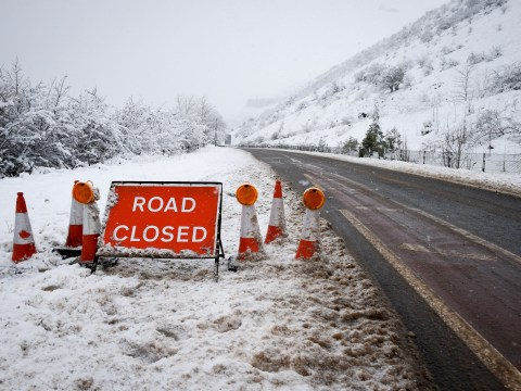 What schools are closed today? How to find out if your school is closed because of snow