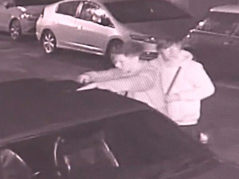 Vandal caught slashing hole in convertible's roof