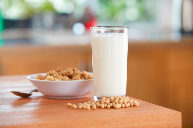"""A glass of soya milk, soya beans and cereals"""