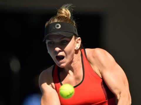 Simona Halep vs Caroline Wozniacki Australia Open final live stream, TV channel, UK time and odds