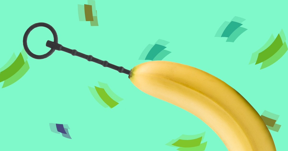 banana with a sounding rod inserted