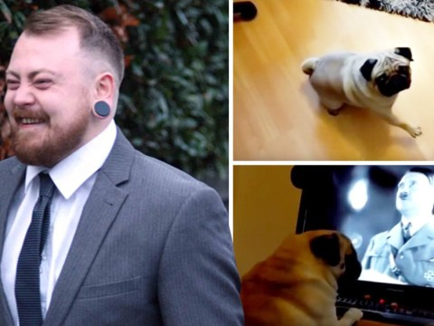 Man who taught dog Nazi salutes 'should be convicted of hate crime'