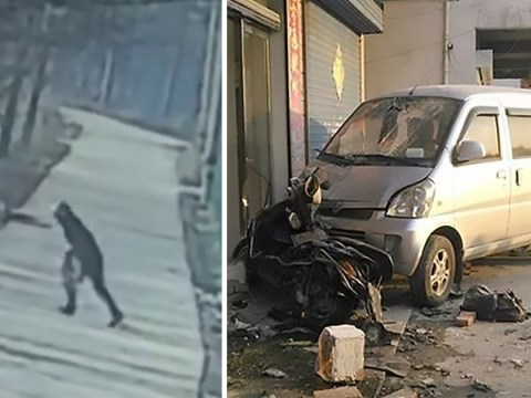 Dog killer dies after pet owner rams him into a brick wall with his car