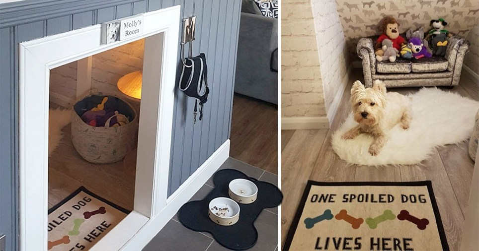 Guy Builds His Dog A Room Under The Stairs To Make Her