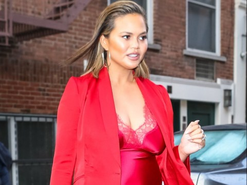 Chrissy Teigen reaches out to her Twitter users as her beloved dog battles cancer