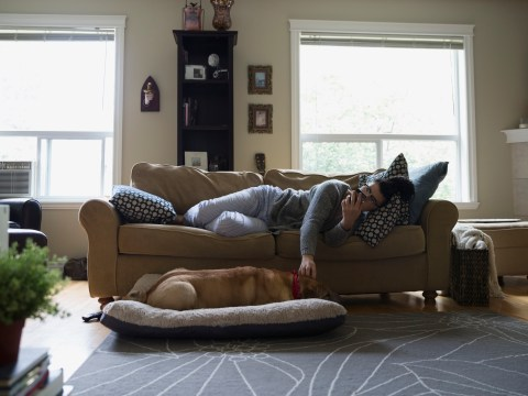 'Even if I can't feed myself, I at least get up and feed them': How pets can help people living with mental illness