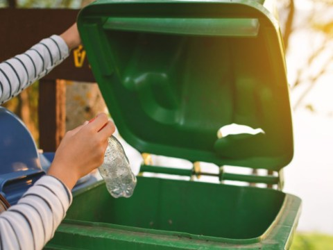 What happens if you don't bother washing your recycling?