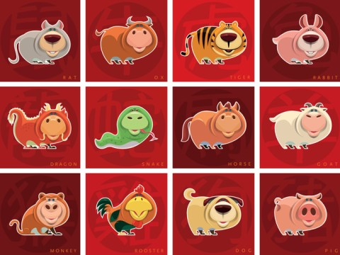 How many animals are there in the Chinese New Year zodiac and which one am I?