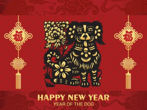 Happy Chinese New Year! What are the characteristics of someone born in the Year of the Dog?