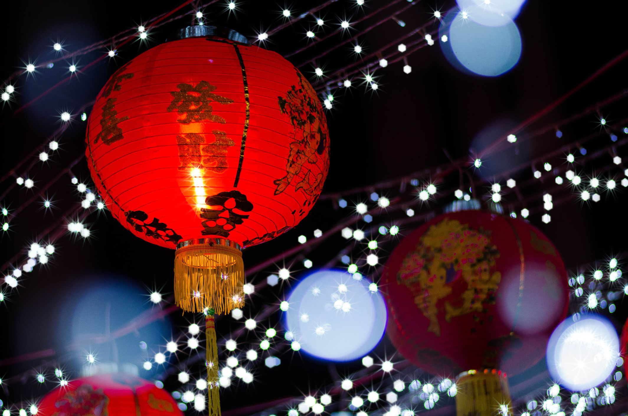 Chinese lanterns to celebrate the new year