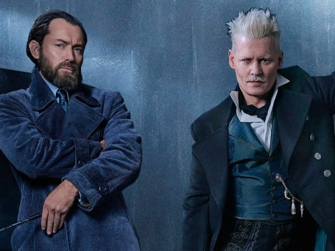 Fantastic Beasts: The Crimes Of Grindelwald trailer drops