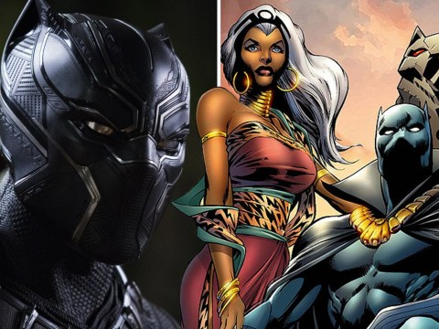 Will Storm feature in Black Panther sequel? Chadwick Boseman isn't a fan of the X-Men and T'Challa romance