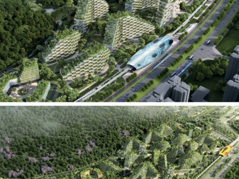 World's first 'forest city' covered in millions of plants to be built in China