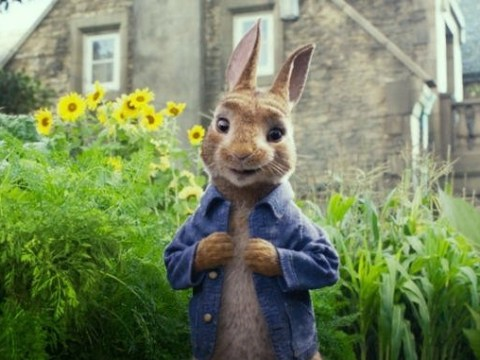 Food allergy advocacy groups call for Peter Rabbit movie boycott over 'food allergy bullying' scene