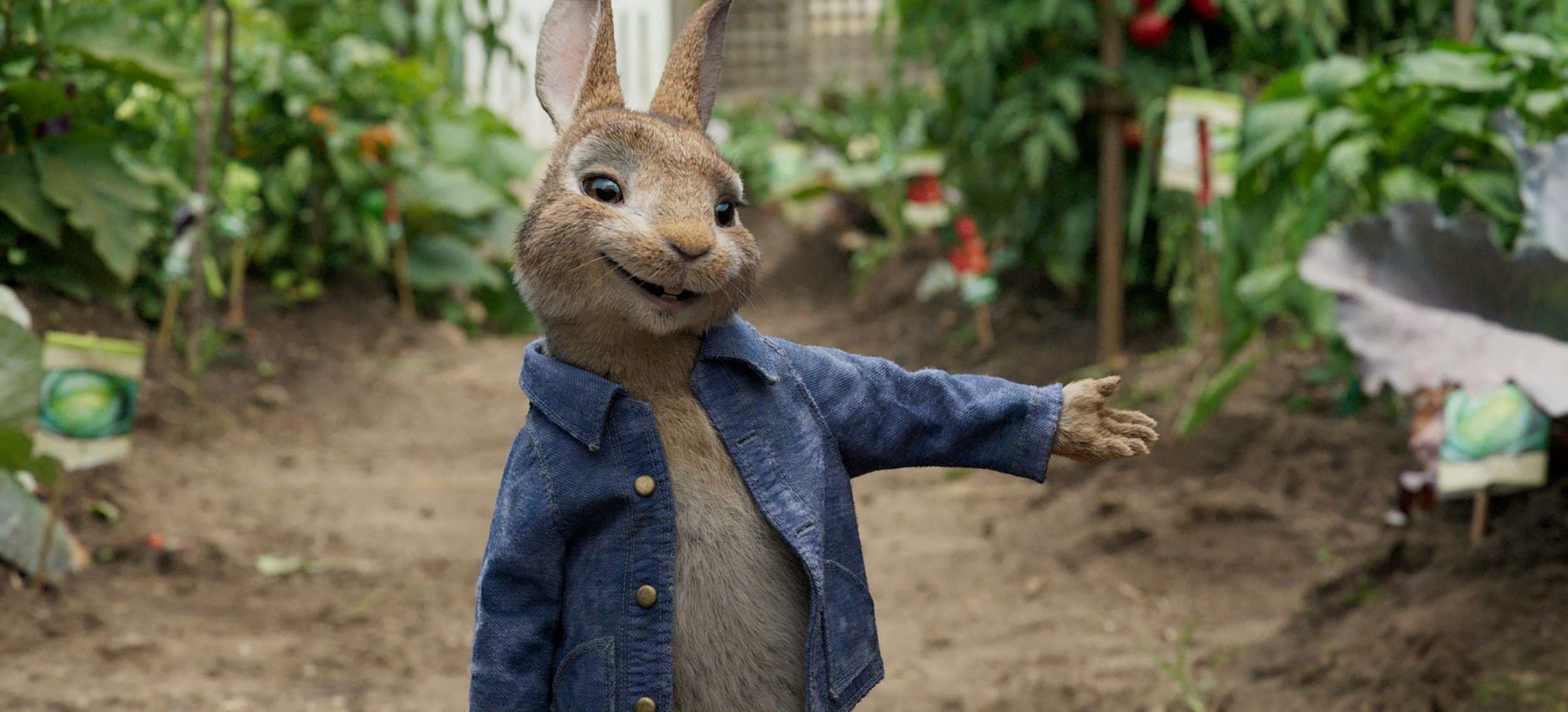 Peter Rabbit faces backlash after pelting allergy sufferer with blueberries