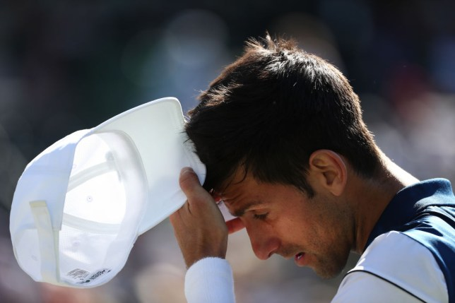 Tennis News: Novak Djokovic makes sad confession after Miami Open defeat