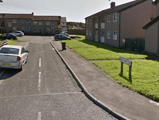 Young girl 'dragged off street and thrown into van by masked men'