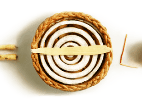 Why is Pi Day today, how many digits is pi and more facts about the number
