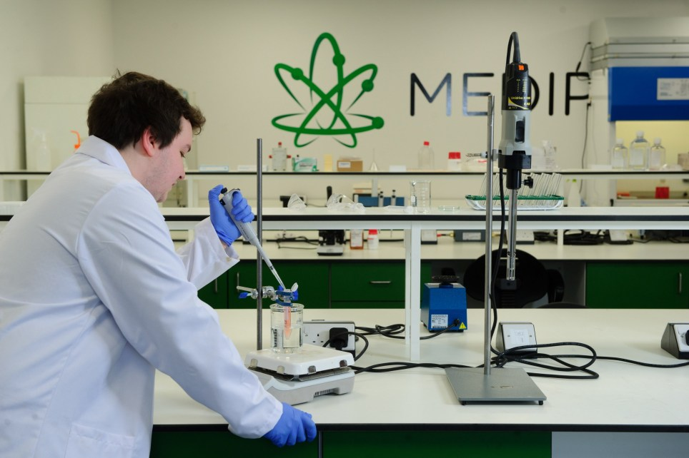 Could cannabis help cure lung cancer? These scientists think