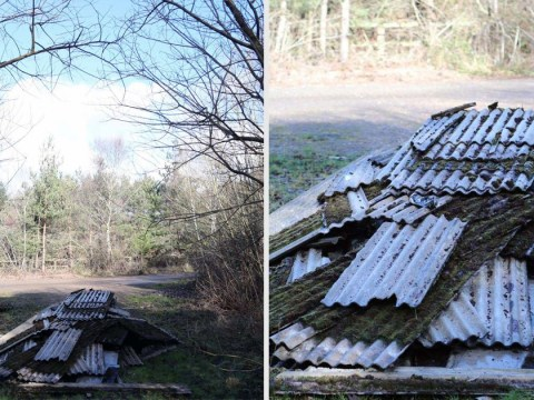 Hunt for fly-tippers who dumped enough asbestos to kill thousands