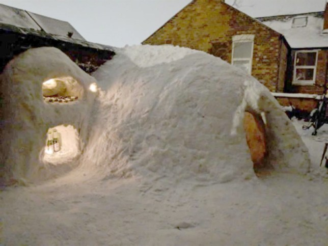 METRO GRAB - taken from the PrimeLocation listing without permissionSomeone has listed an igloo in NOttingham for sale with a price of ?99,000https://www.primelocation.com/for-sale/details/photos/46791351PrimeLocation