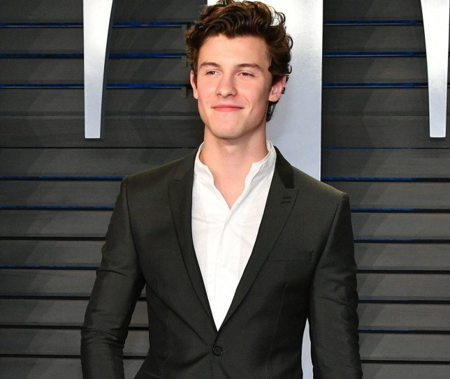BEVERLY HILLS, CA - MARCH 04: Shawn Mendes attends the 2018 Vanity Fair Oscar Party hosted by Radhika Jones at Wallis Annenberg Center for the Performing Arts on March 4, 2018 in Beverly Hills, California. (Photo by Dia Dipasupil/Getty Images)
