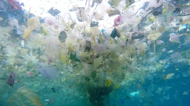 Richard Horner captures sealife swimming amongst masses of plastic pollutants at Manta Point, Nusa Penida, Bali. March 3, 2018. See NTI story NTISEA. The 45 year old, ex mechanical design engineer from East Sussex, UK has been living in Bali, for 5 years. It is believed the plastic comes from Indonesia where rubbish is dropped and washed into the rivers via storm drains. The waters around Bali are dominated by the Indonesian through-flow, and plastic and other pollutants pass very regularly in the wet season.
