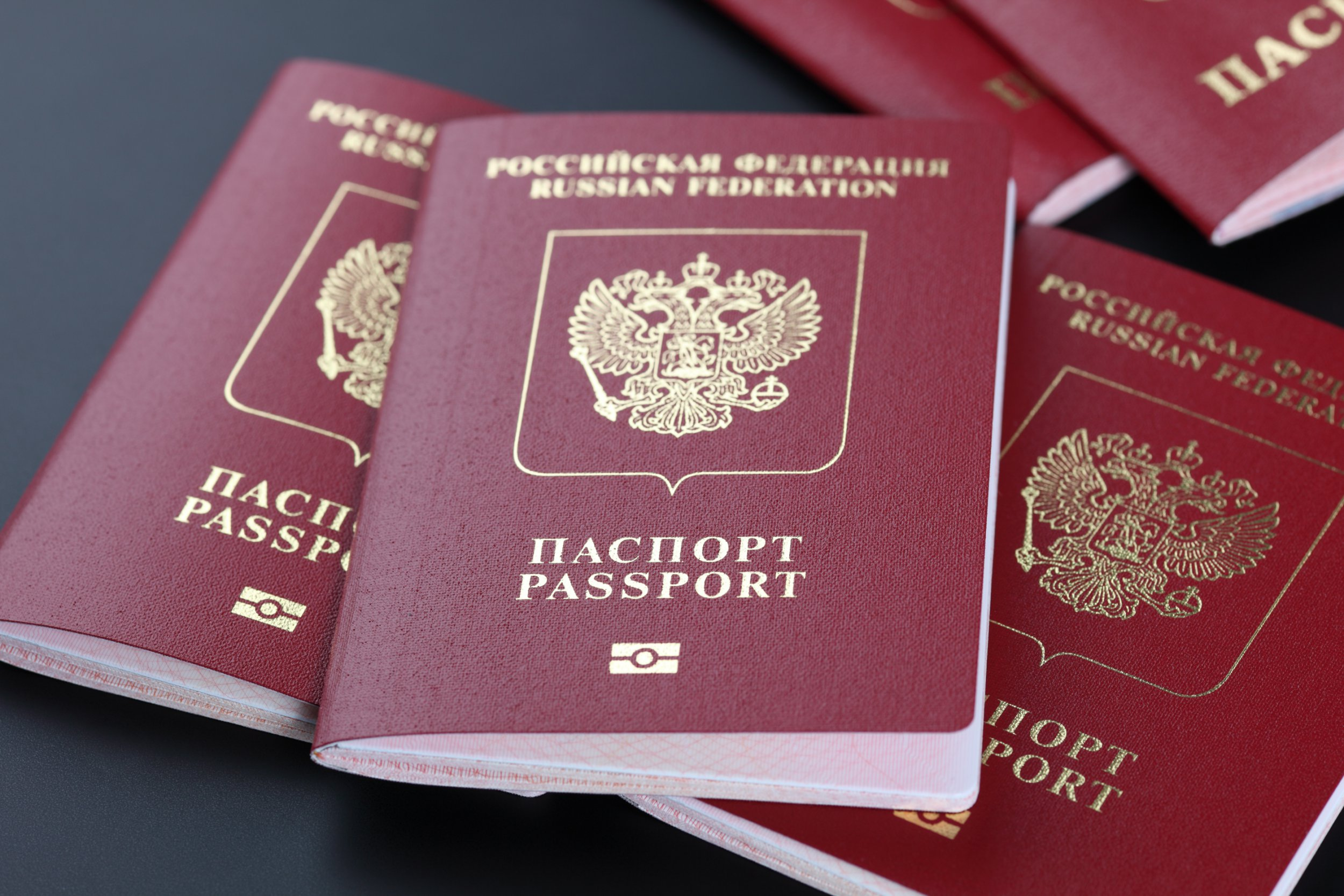 New Russian Federation passports with microchip.