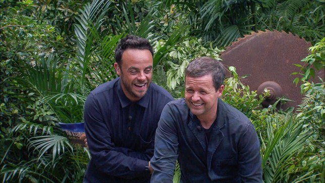 EDITORIAL USE ONLY - NO MERCHANDISING Mandatory Credit: Photo by ITV/REX/Shutterstock (9251517id) Bushtucker Trial: Fear Factory - Anthony McPartlin and Declan Donnelly 'I'm a Celebrity... Get Me Out of Here!' TV Show, Series 17, Australia - 29 Nov 2017