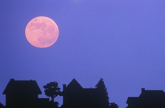 In some cases, the moon may actually look a little pink. Which is poetic (Getty)