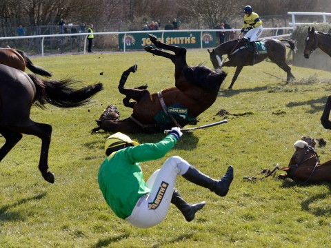 How many horses die at the Grand National?
