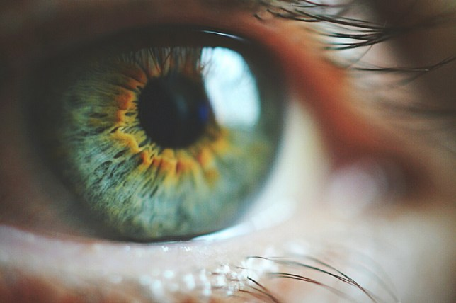 Is hair and eye colour genetic? | Metro News