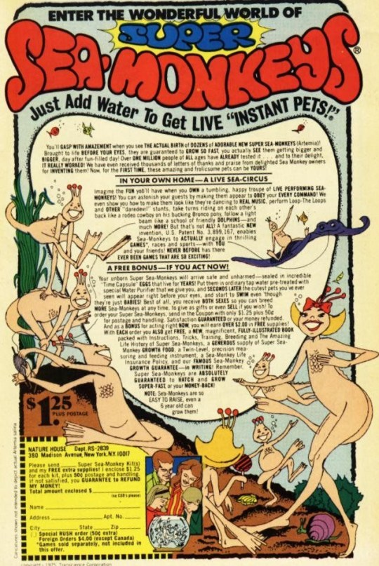 What are sea-monkeys, how long do they live, are they real