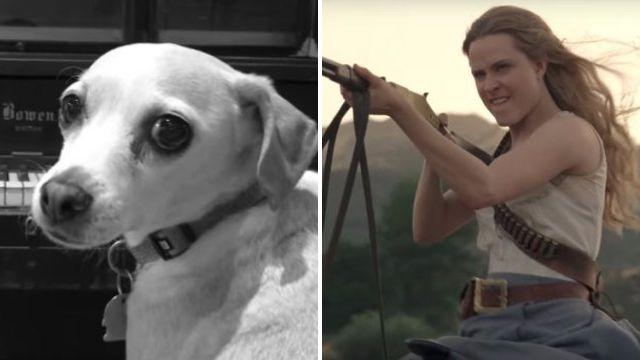 Westworld creators troll fans in the best way after promising to release season 2 spoilers