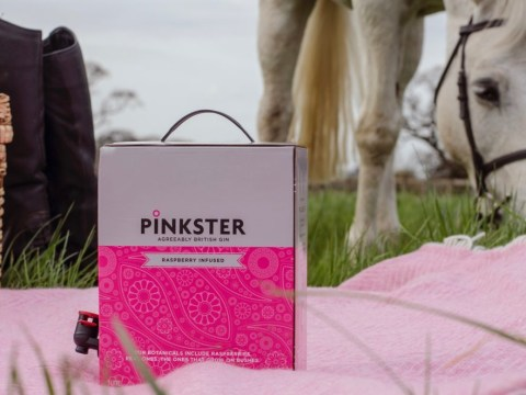 You can now get giant boxes of pink gin for your summer BBQ