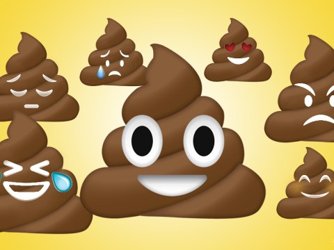 That gut feeling: Would you have a poo transplant to make you happy?