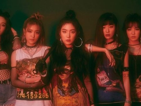 Red Velvet top girl groups' brand reputation index after performing in North Korea