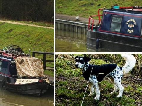 Thieves stole man's dog after breaking into houseboat and taking it for a ride