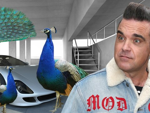 Robbie Williams is being 'terrorised by evil peacocks who are destroying his car'