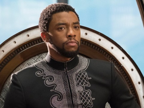 When is the Black Panther DVD release date and how to pre-order?