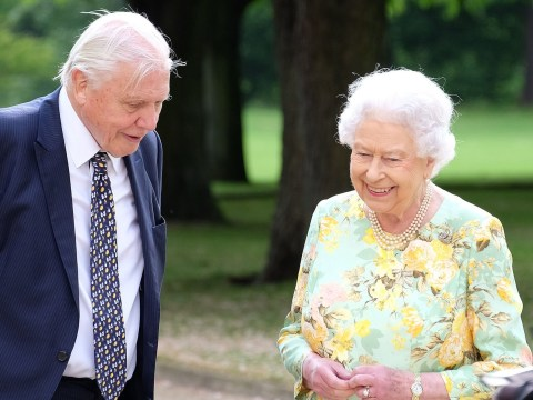 Sir David Attenborough admits he was nervous ahead of filming The Queen's Green Planet