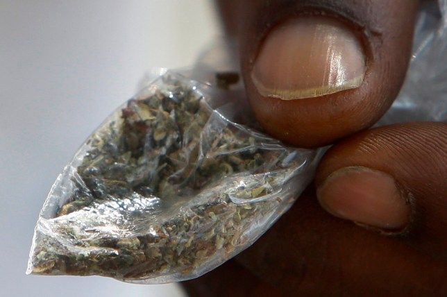 FILE - In this June 29, 2016 file photo, a man holds a bag of synthetic marijuana in Houston. In a report released Tuesday, April 10, 2018, fake marijuana likely contaminated with rat poison has killed three people in Illinois and sickened more than 100 others in the past month. (Melissa Phillip/Houston Chronicle via AP)