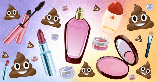 police find animal waste in counterfeit makeup -- so it's not such a bargain after all