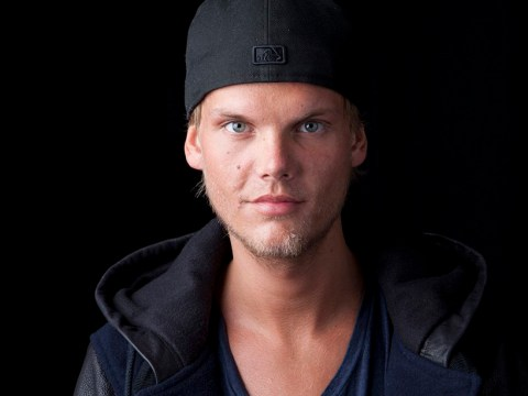 Avicii's 'worried' brother arrived just hours after brother died as family grew concerned about DJ